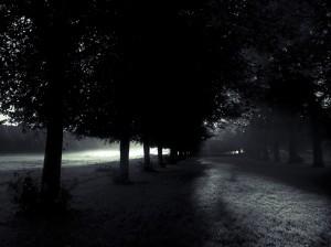 Dark Dawn S Davies