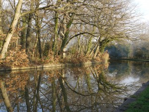 Canal in Autumn J Jeeves